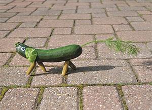 Gemüse Dackel