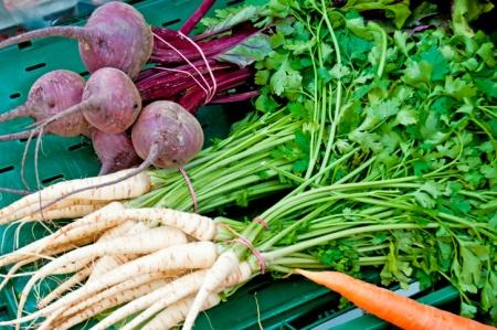 Gesund essen oder wie in der Landküche tolle Gemüsesuppen entstehen