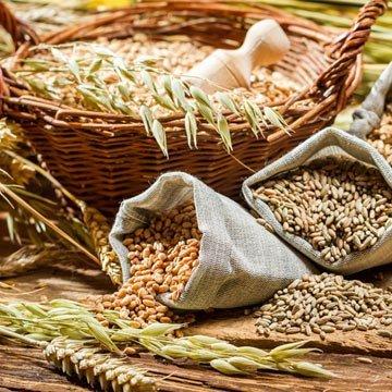 Bio-Getreide: Infos und leckere Rezepte