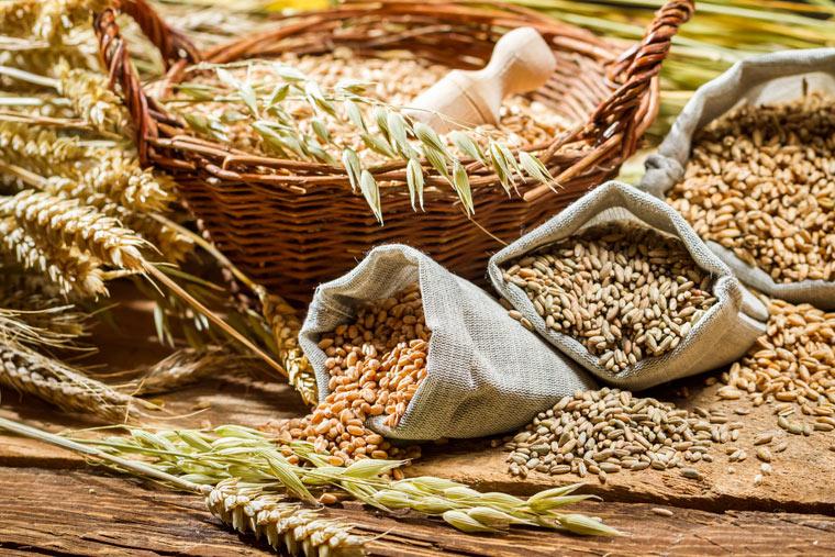 Getreidevielfalt in Deutschland