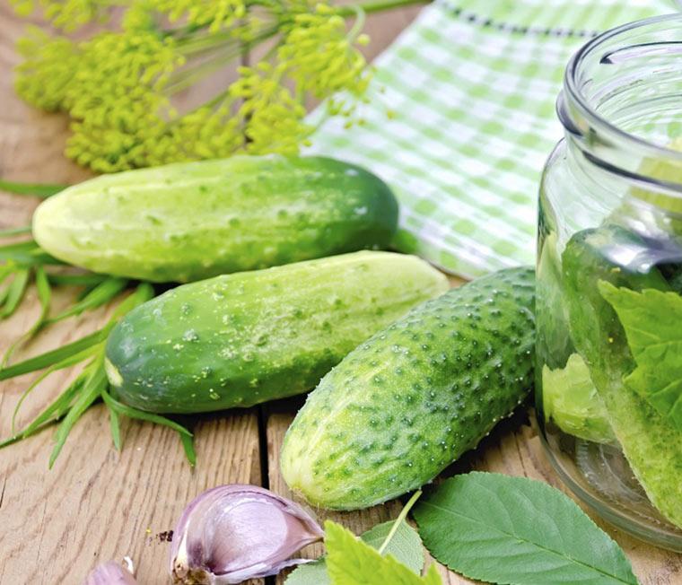 Leckere Gurken kann man schnell einkochen. © rezkrr/iStock/Thinkstock
