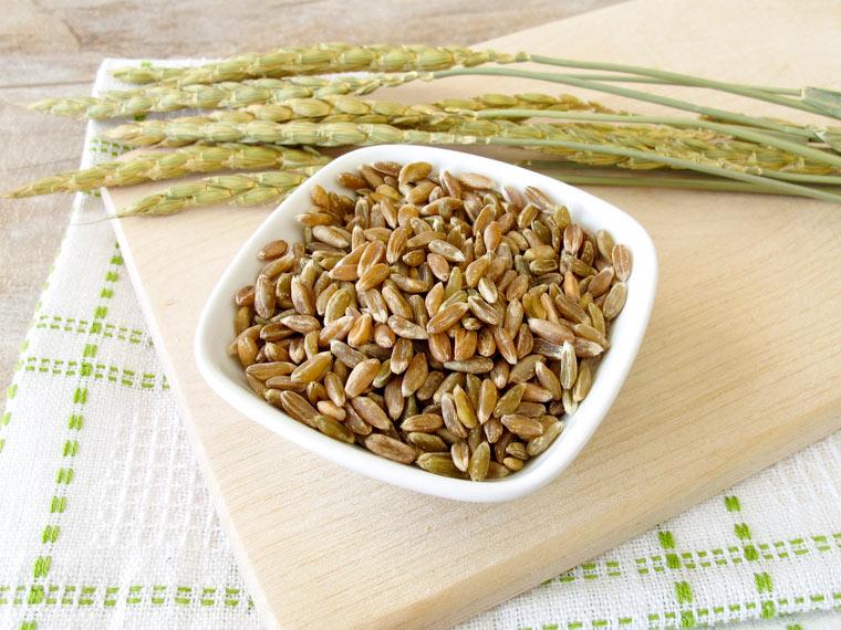 Grünkern – das heimische, gesunde Superfood