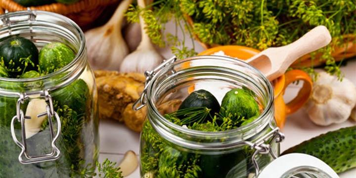 Rezept: Wie Sie Gurken selbst einlegen und einmachen