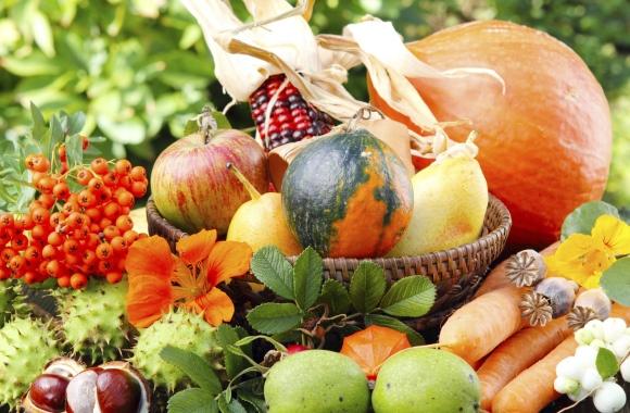 Besonderes Gemüse: Der vielfältige Kürbis