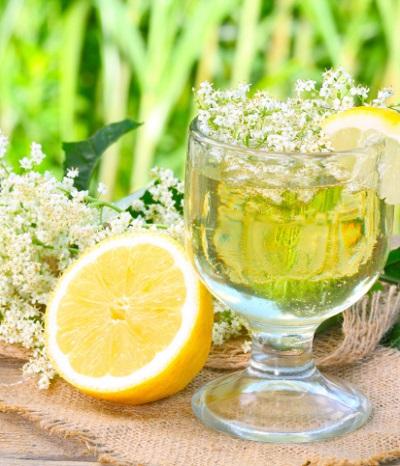 Frische Holunderlimonade ohne Zucker