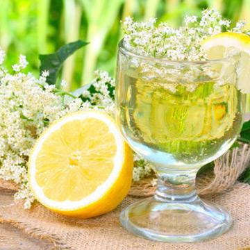 Schöne Holunderzeit: Leckeres Holunderblütengetränk ohne Zucker erfrischt im Sommer