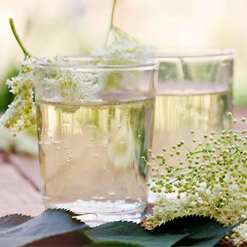 Rezept: Leckere Holunder Limonade einfach selber machen