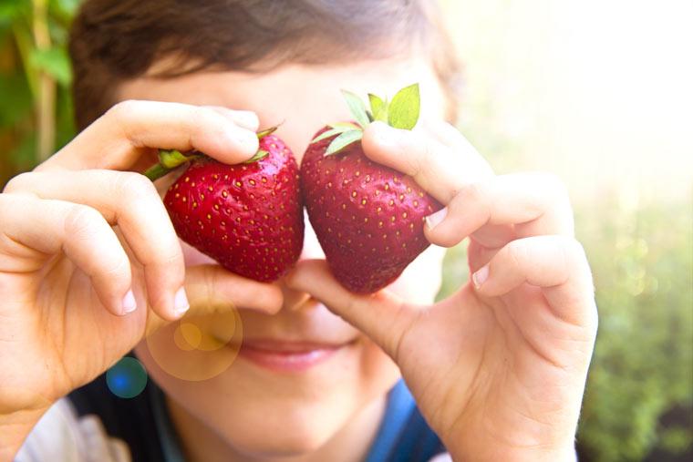 Erdbeeren sind besonders belastet