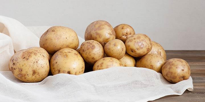 Das Geheimnis der Kartoffel: Erdapfel, das Universalgenie