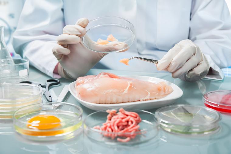 Fleisch aus dem Labor - das Nahrungsmittel der Zukunft.