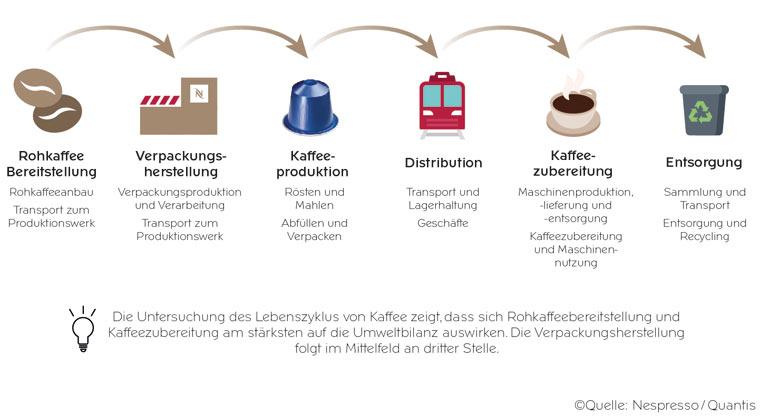 Lebenszyklusphase Kaffee