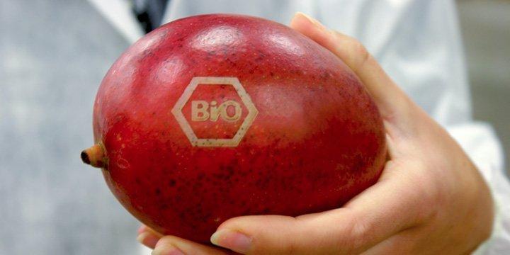 Schluss mit Verpackungen bei Bio-Obst und Gemüse