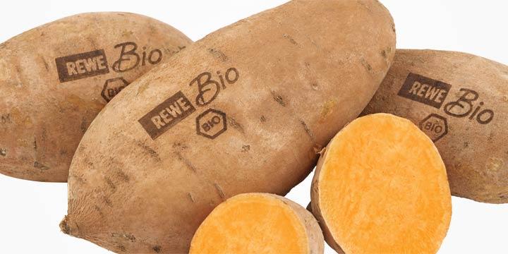 Rewe ersetzt Pastikverpackung für Bio-Lebensmittel durch Licht-Label