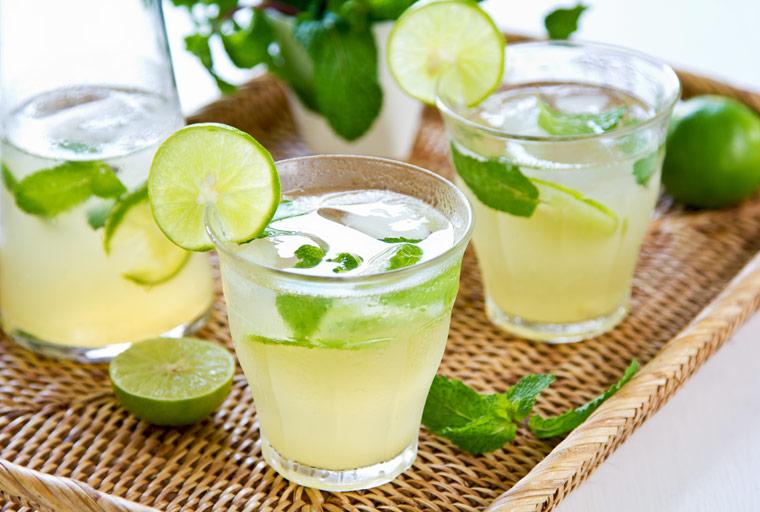 Limonaden Rezepte: Selbstgemachte Limo mit Minze
