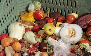 Müll Essen Lebensmittelverschwendung