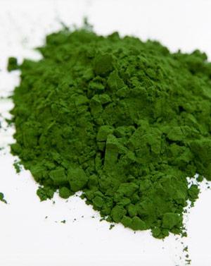 Mikroalgen als pflanzliche Proteinquelle - essen wir bald alle Mikroalgen?