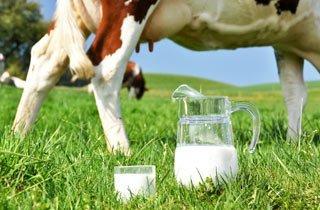 8 Gründe warum du Milch meiden solltest