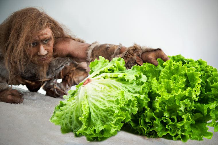 Das Klischee des jagenden Steinzeitmenschen hingt. Forscher sagen: Spanische Neandertaler waren Vegetarier.