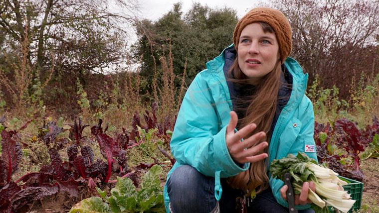 Nicole Klaski erntet übrig gebliebenes Gemüse und bietet es in ihrem Laden an