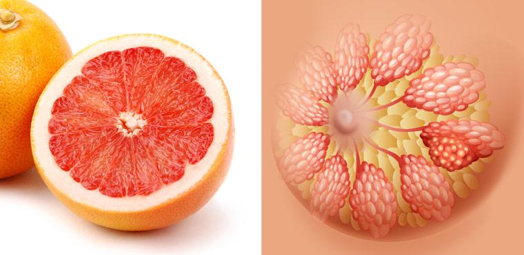 Grapefruit ? Brust