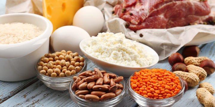 So wichtig sind Proteine für eine gesunde Ernährung