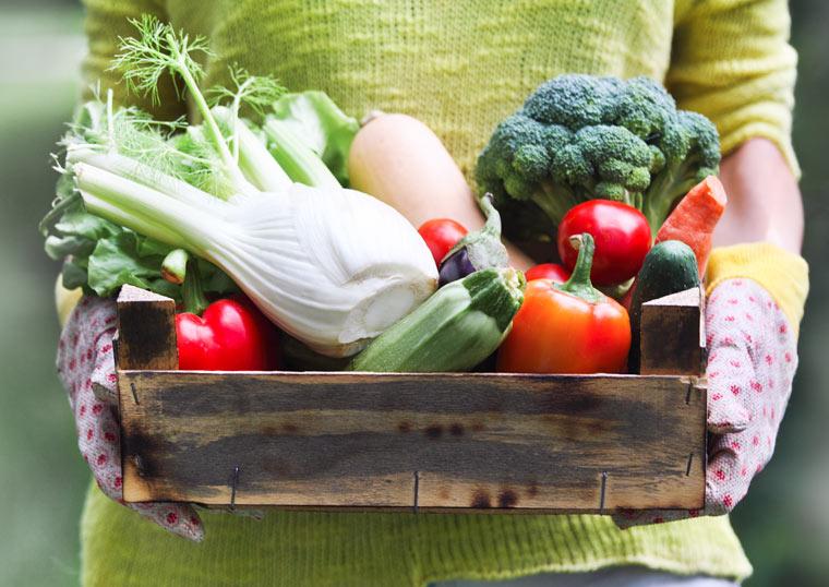 Regionale Gemüsekiste