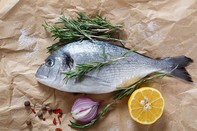 Roher Fisch auf Papier