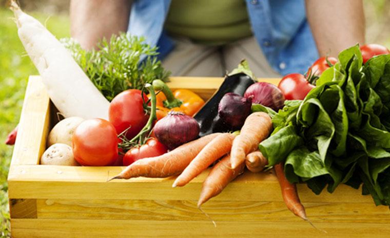 Obst und Gemuese rgional und saisonal kaufen