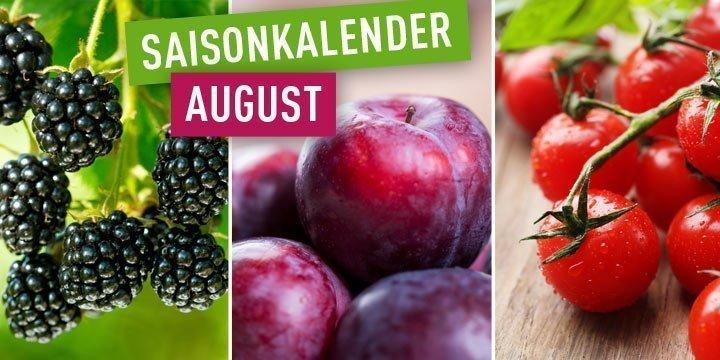 Saisonkalender Obst: Saisonales Obst und Gemüse im August