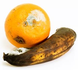 Schimmliges Obst