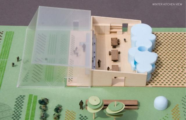 Essbarer Schulgarten von WORK AC: Spielerisch Nachhaltigkeit lehren