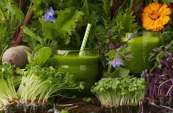 Sieben Tage Grüne Smoothies: Vegan & Rohkost Detox-Kur mit Abnehm-Effekt
