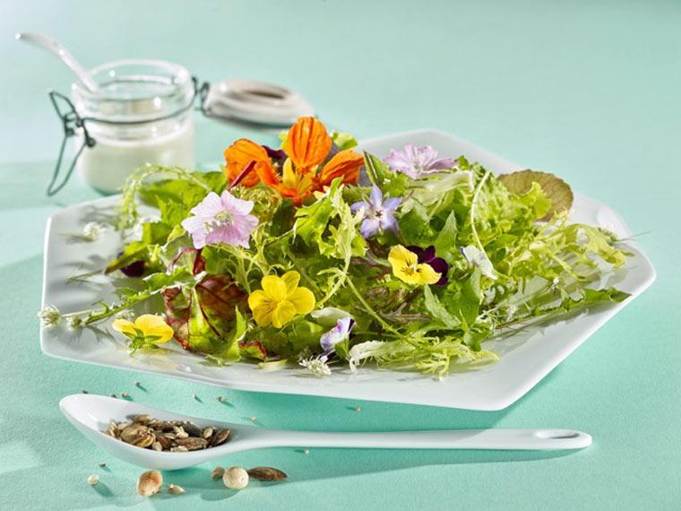 Knackiger Sommersalat mit Wildkräutern und einer Molkevinaigrette
