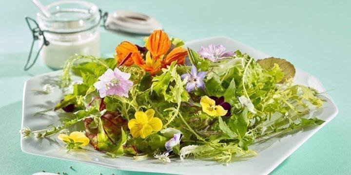 Sommersalate mit dem gewissen Etwas