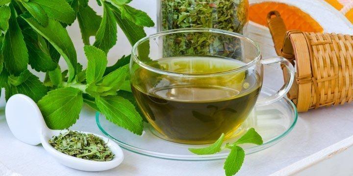 Echte Stevia-Blätter sind jetzt in Tee's erlaubt