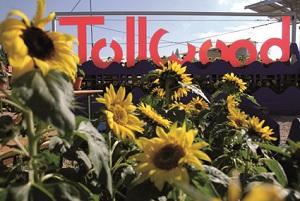 Das Tollwoodfestival verschönert den Sommer. © Markus Dlouhy