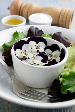 Veilchensalat