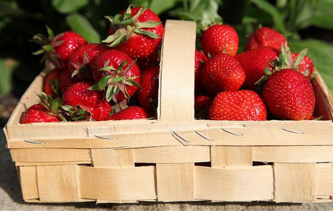 Erdbeeren reinigen die Haut