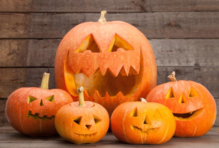 Halloween Kürbisse sind im herbst sehr bleiebt