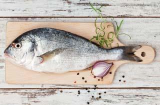 Fischratgeber: Welchen Fisch kann ich noch essen