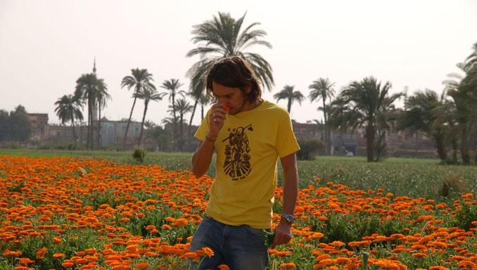 Sebastian Pole prüft für Pukka Herbs Ringelblumen in Ägypten.