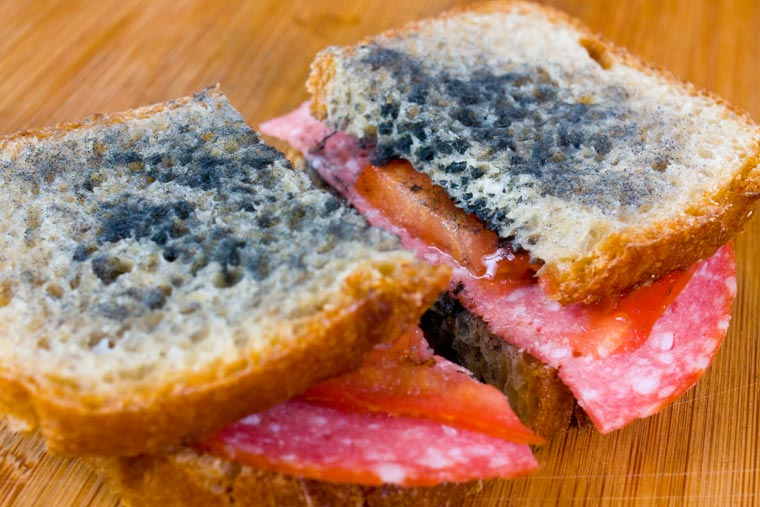 schimmliges Brot