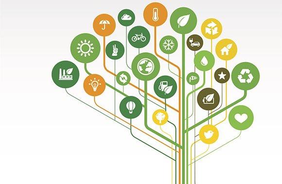 WerteMarken: Die Zukunft von Bio