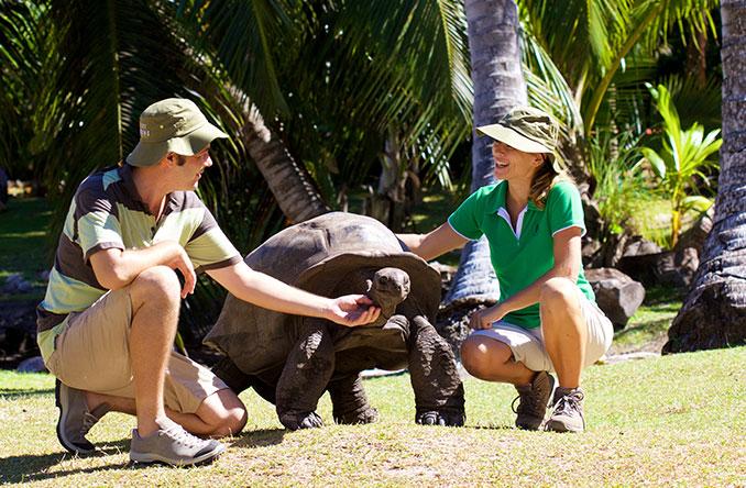 Öko-Ranger mit Schildkröte
