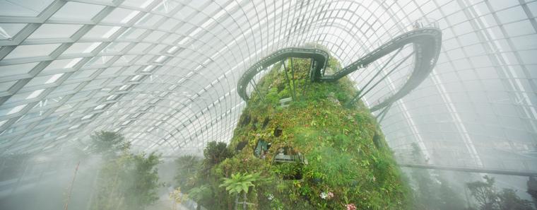 In den Gewächshäusern wachsen Pflanzen aus fast allen Gegenden der Welt