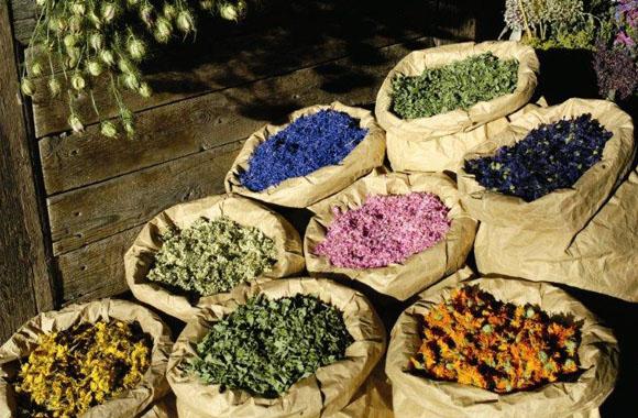 Bauernmärkte in der Region Seiser Alm