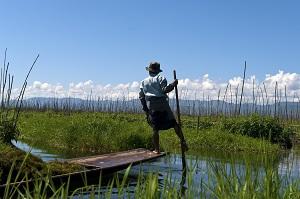 Ganz nah bei den Berggorillas mit Wikinger Reisen ©Wikinger Reisen