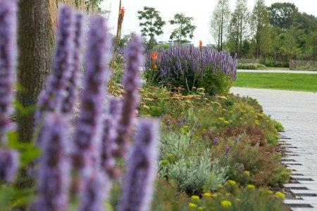 Floriade: Welt-Garten-Expo in Venlo.