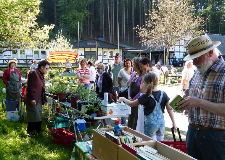 Pflanzen- und Gartenflohmarkt Altwindeck