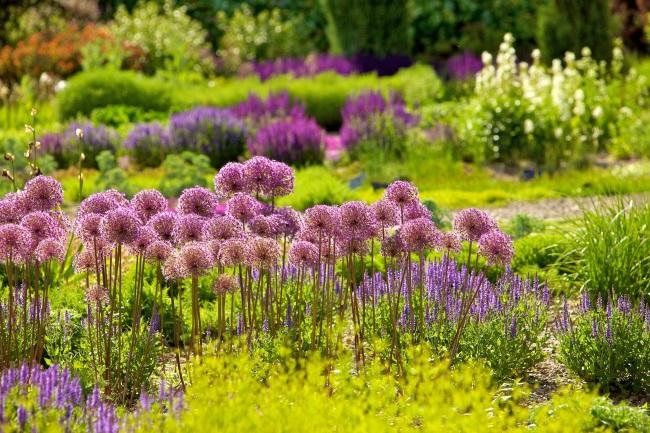 Garten Reisen: Natur erleben in Gärten ohne Grenzen